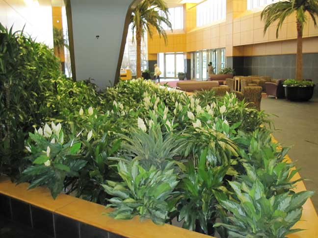 Silks gallery artscape interior plant specialists for Artificial plants for interior decoration