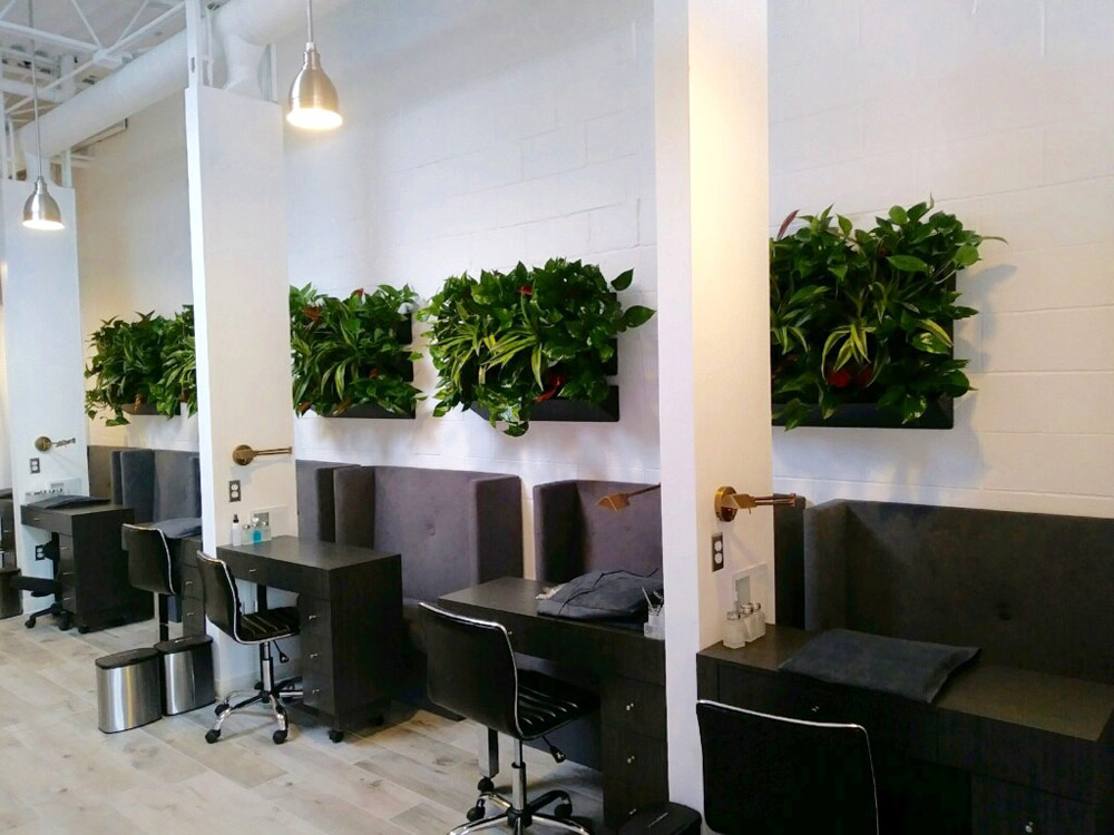 ArtScape Plant Services Creates Interior Plant Arrangements And Landscaping  Using Contemporary Containers And Trending Plantings That Will Enhance And  ...